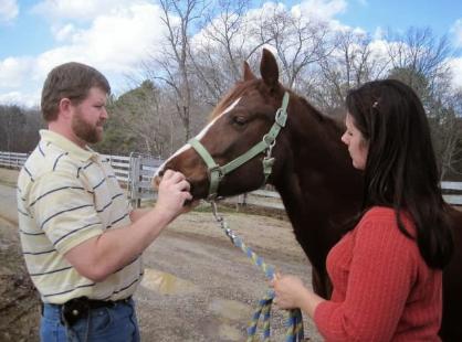 Mobile Equine Veterinarian in Ringgold, GA
